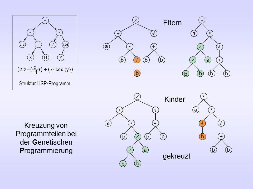 Kreuzung von Programmteilen bei der Genetischen Programmierung