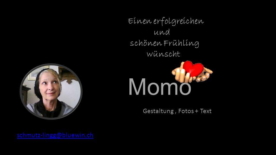 Momo Einen erfolgreichen und schönen Frühling wünscht