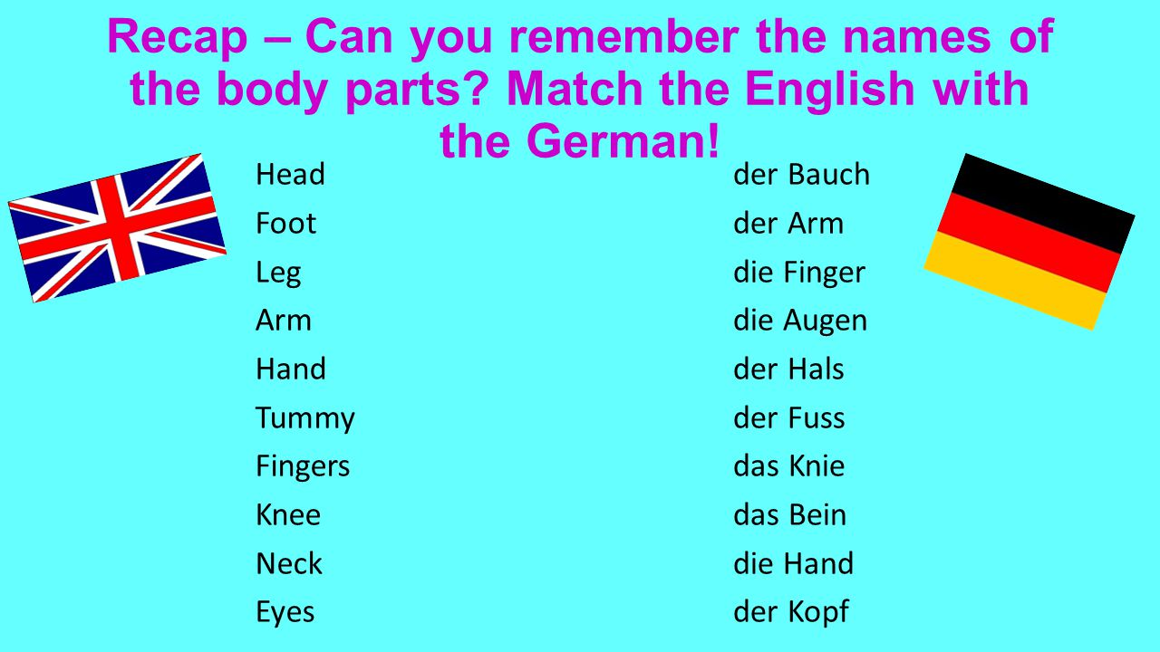 Recap – Can you remember the names of the body parts