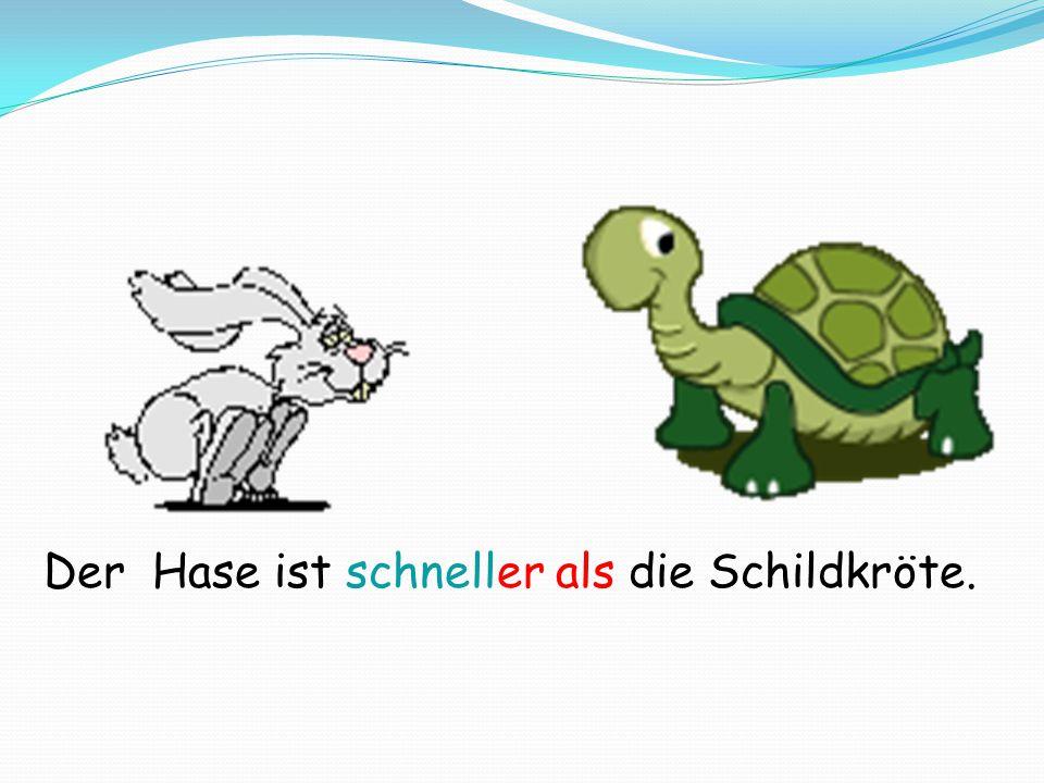 Der Hase ist schneller als die Schildkröte.