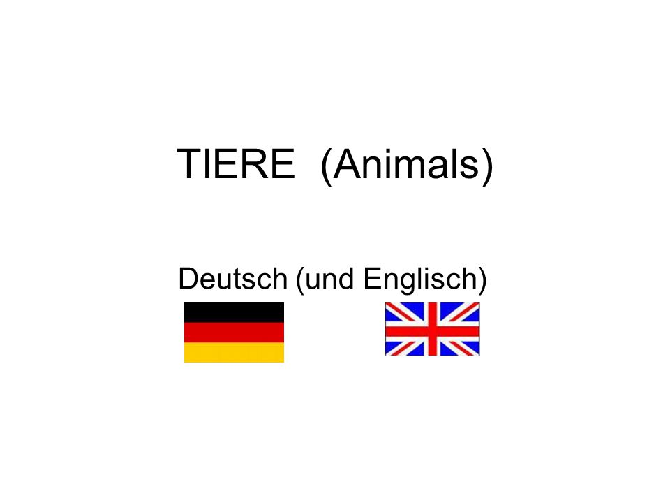 Deutsch (und Englisch)