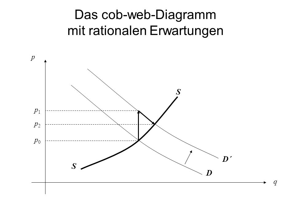 Das cob-web-Diagramm mit rationalen Erwartungen