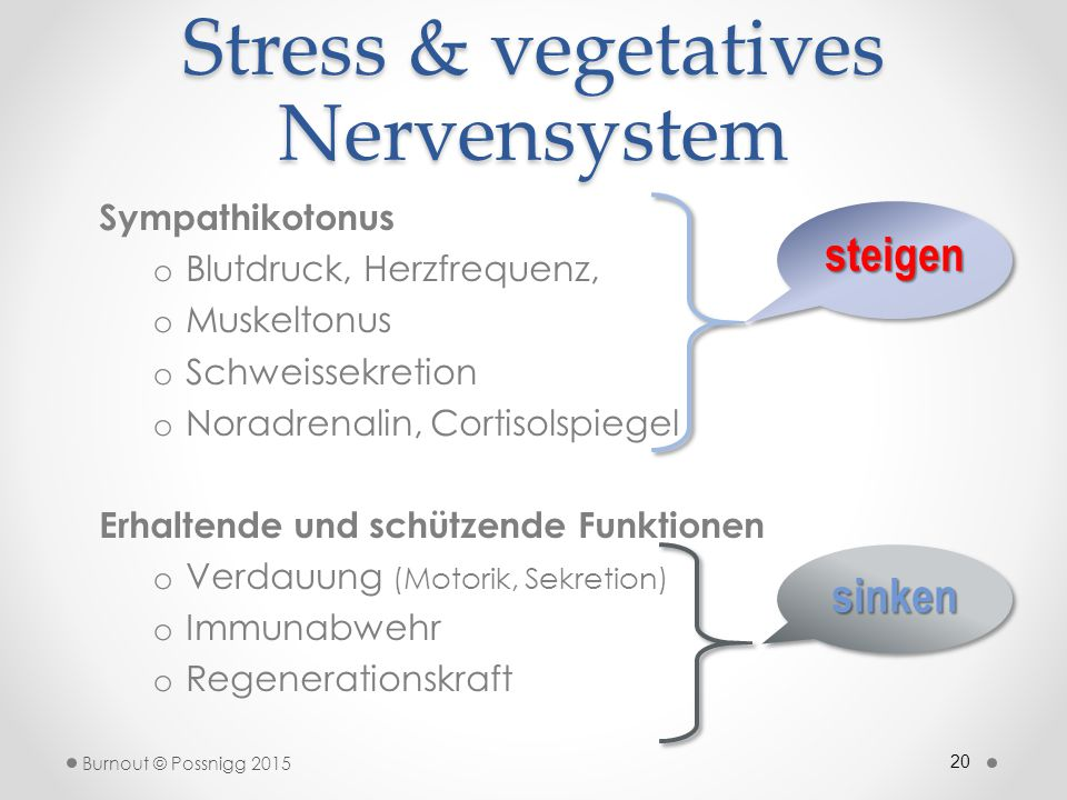 Stress & vegetatives Nervensystem