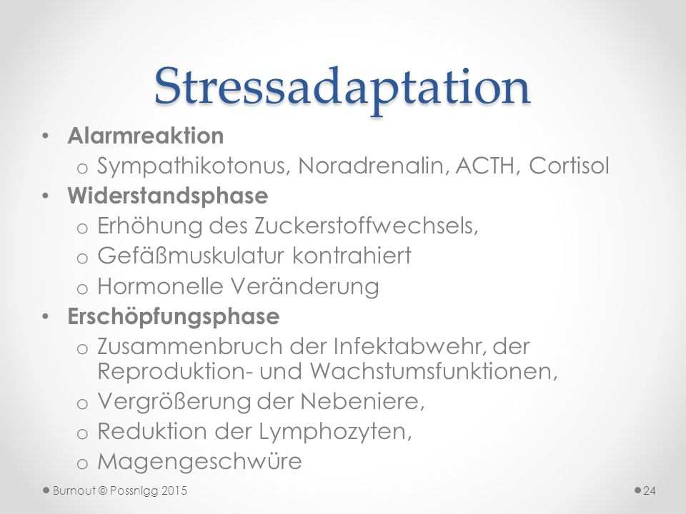 Stressadaptation Alarmreaktion