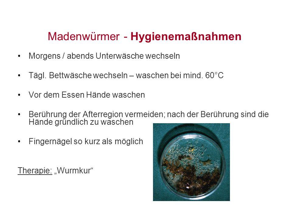Madenwürmer - Hygienemaßnahmen