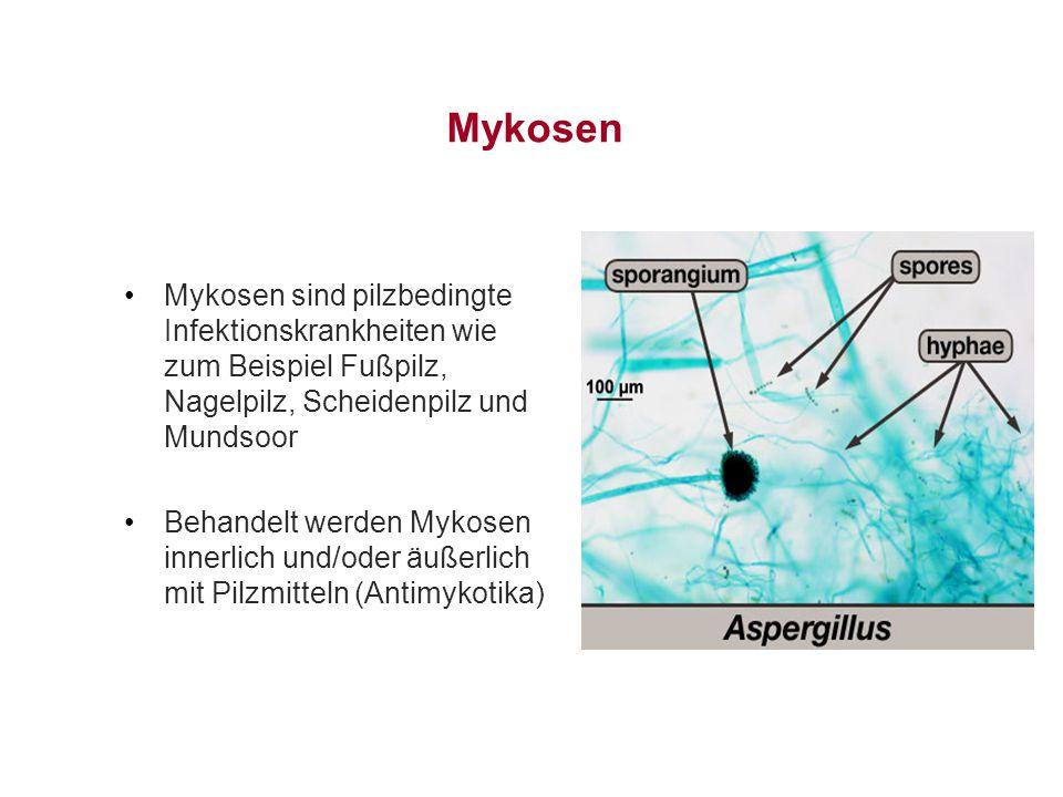 Mykosen Mykosen sind pilzbedingte Infektionskrankheiten wie zum Beispiel Fußpilz, Nagelpilz, Scheidenpilz und Mundsoor.