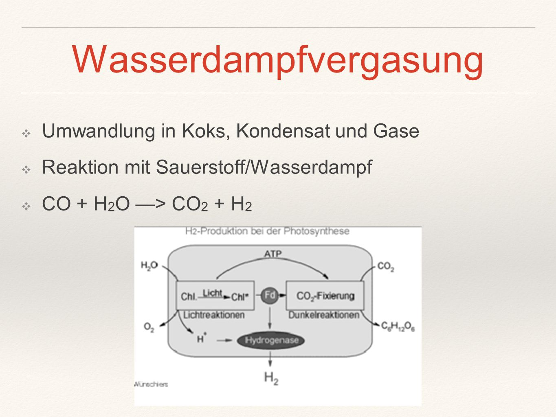 Wasserdampfvergasung