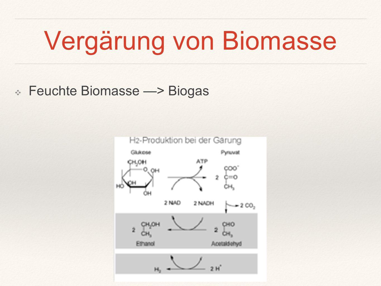 Vergärung von Biomasse