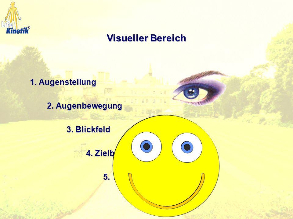 Visueller Bereich 1. Augenstellung 2. Augenbewegung 3. Blickfeld
