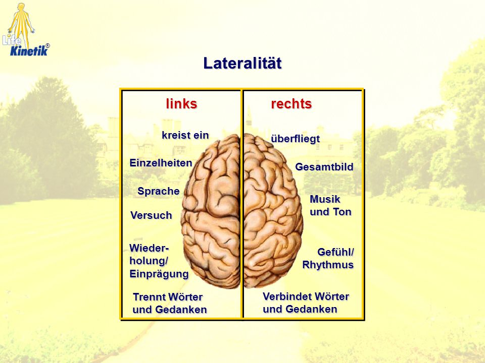 Lateralität links rechts kreist ein überfliegt Einzelheiten Gesamtbild