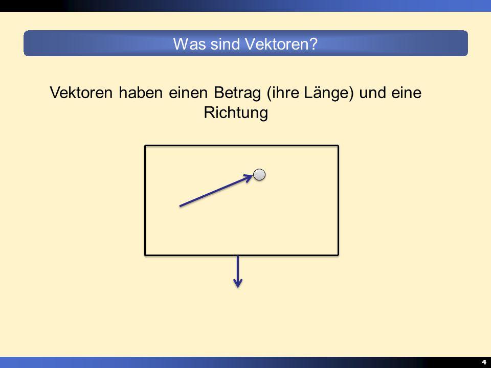 Vektoren haben einen Betrag (ihre Länge) und eine Richtung