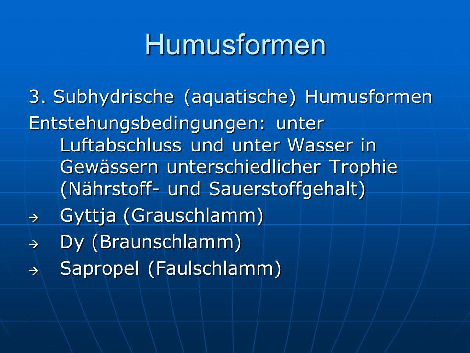 Humusformen 3. Subhydrische (aquatische) Humusformen