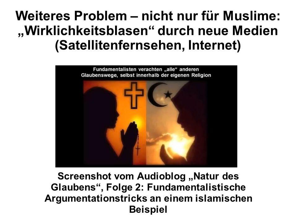 """Weiteres Problem – nicht nur für Muslime: """"Wirklichkeitsblasen durch neue Medien (Satellitenfernsehen, Internet)"""