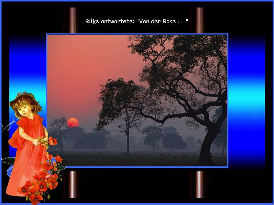 Rilke antwortete: Von der Rose . . .