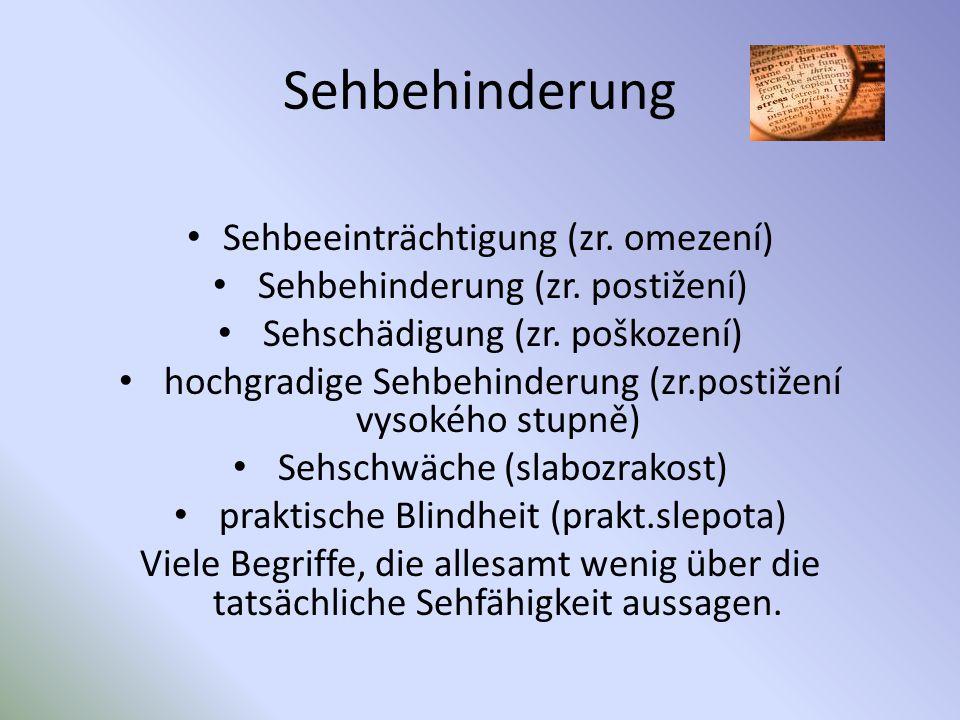 Sehbehinderung Sehbeeinträchtigung (zr. omezení)