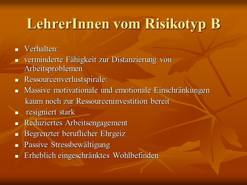 LehrerInnen vom Risikotyp B