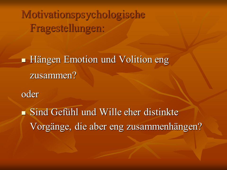 Motivationspsychologische Fragestellungen: