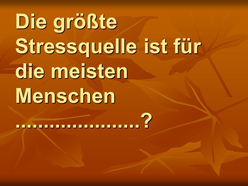 Die größte Stressquelle ist für die meisten Menschen ......................