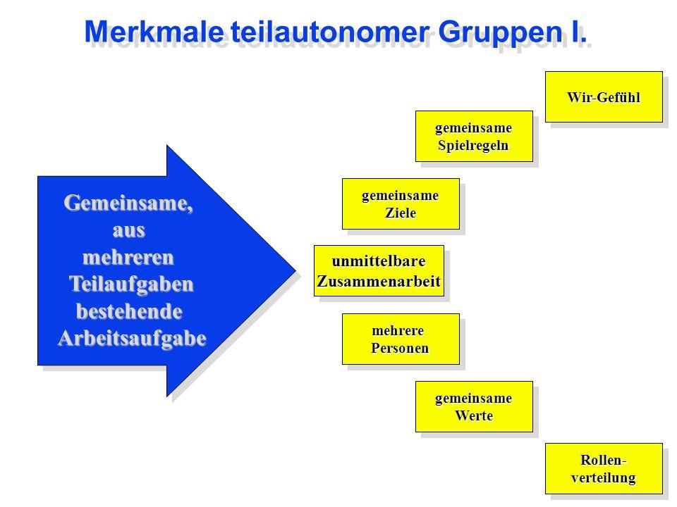 Merkmale teilautonomer Gruppen I.