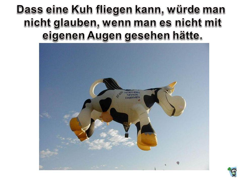 Dass eine Kuh fliegen kann, würde man