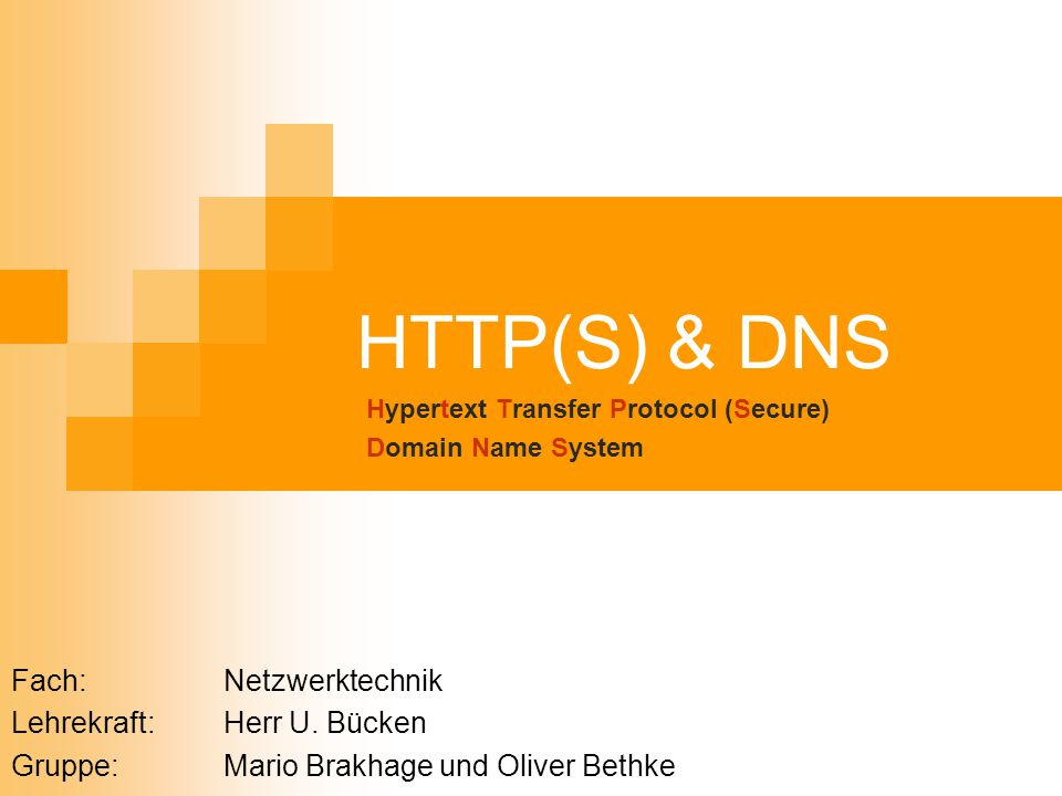 Hypertext Transfer Protocol (Secure) Domain Name System