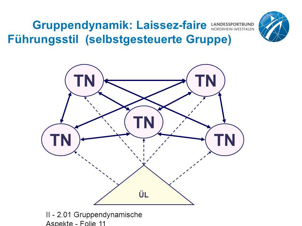 Gruppendynamik: Laissez-faire Führungsstil (selbstgesteuerte Gruppe)