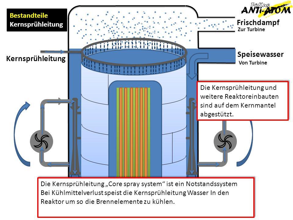 Frischdampf Speisewasser Kernsprühleitung Bestandteile