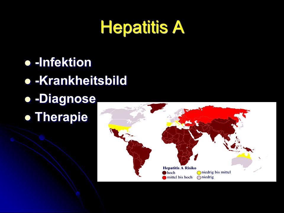 Hepatitis A -Infektion -Krankheitsbild -Diagnose Therapie Infektion: