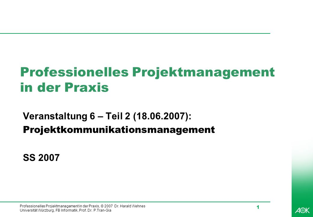 Professionelles Projektmanagement in der Praxis