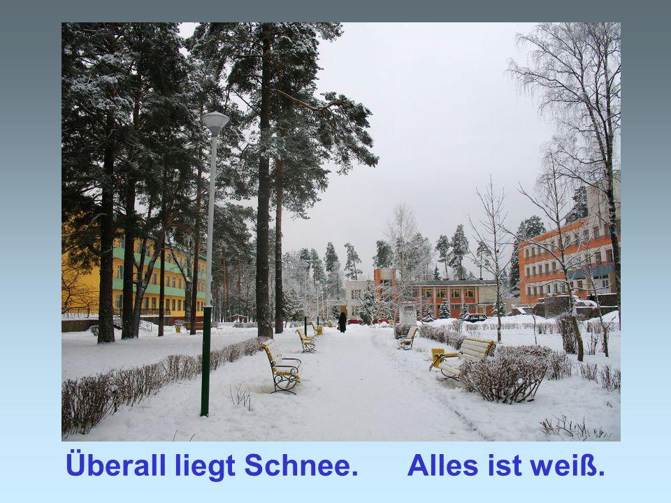 Überall liegt Schnee. Alles ist weiß.