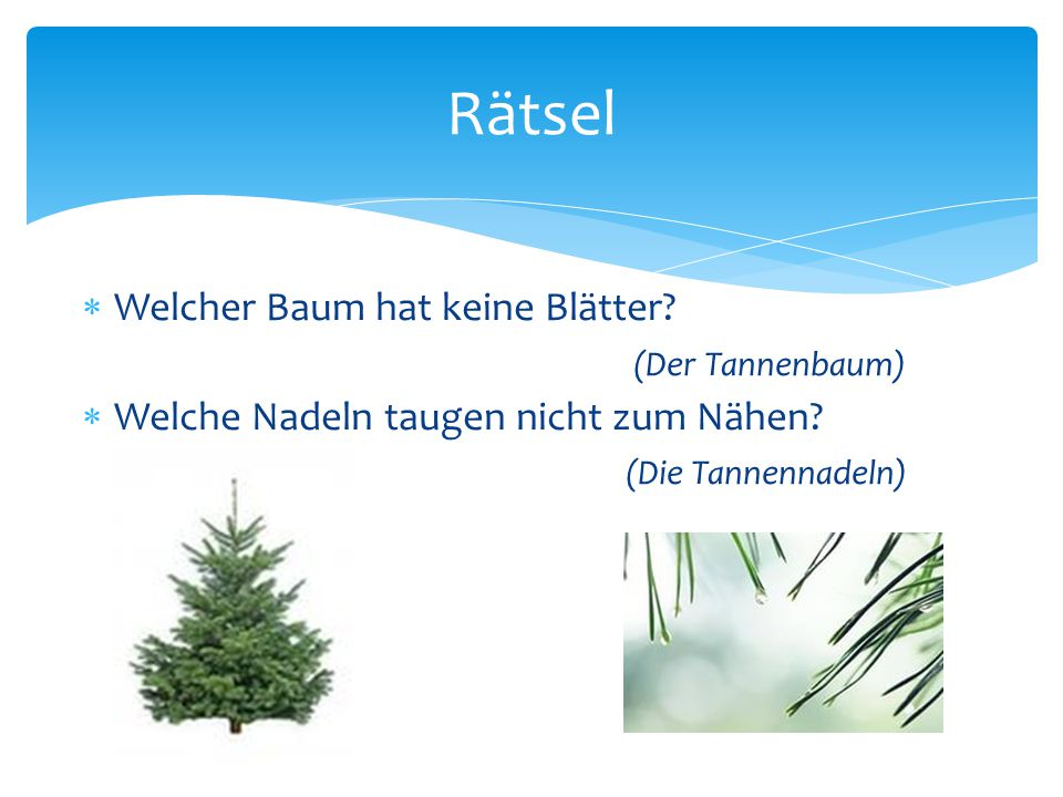 Rätsel Welcher Baum hat keine Blätter (Der Tannenbaum)