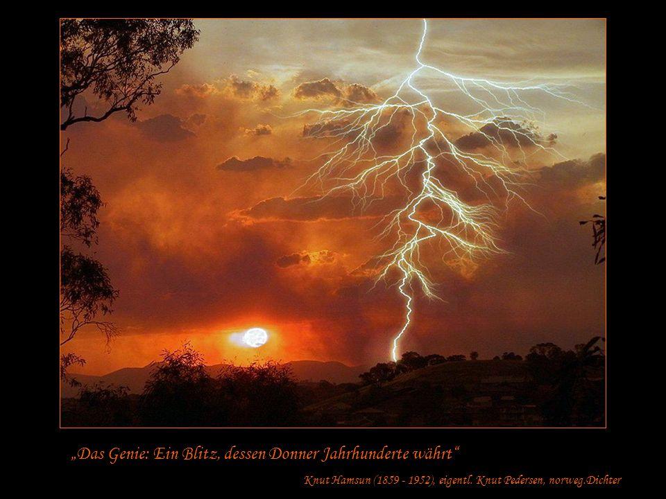 """""""Das Genie: Ein Blitz, dessen Donner Jahrhunderte währt"""