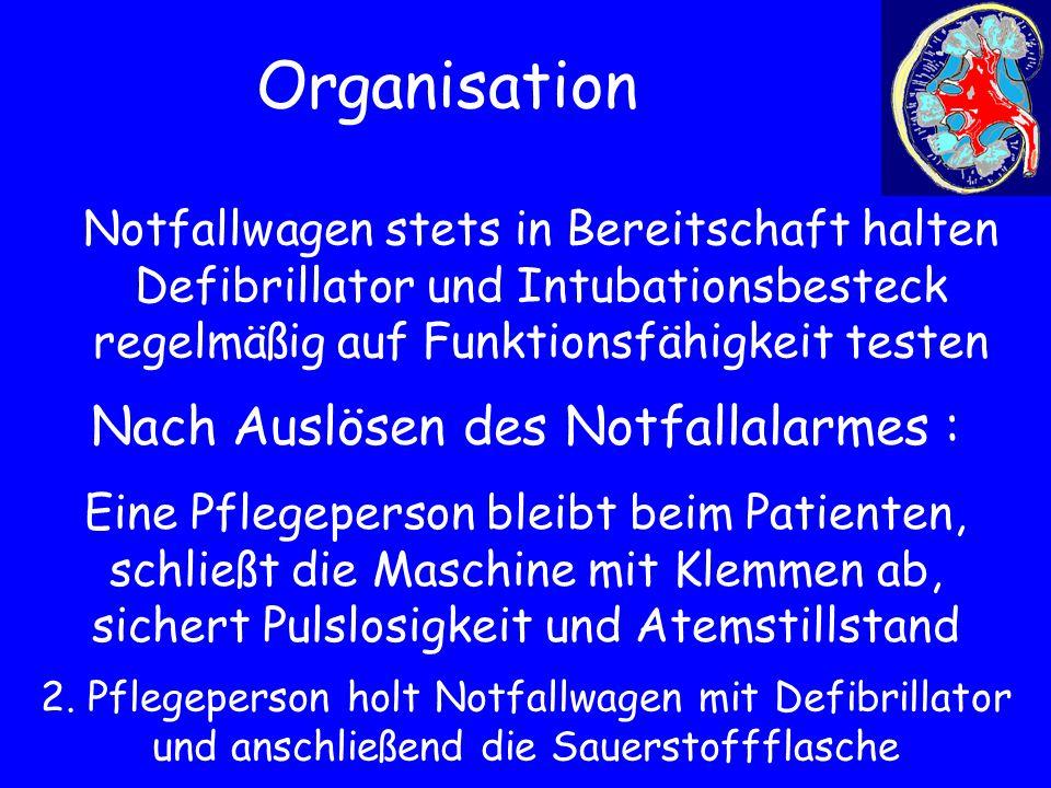Organisation Nach Auslösen des Notfallalarmes :