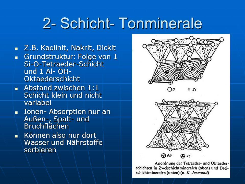 2- Schicht- Tonminerale