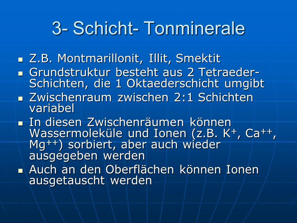 3- Schicht- Tonminerale