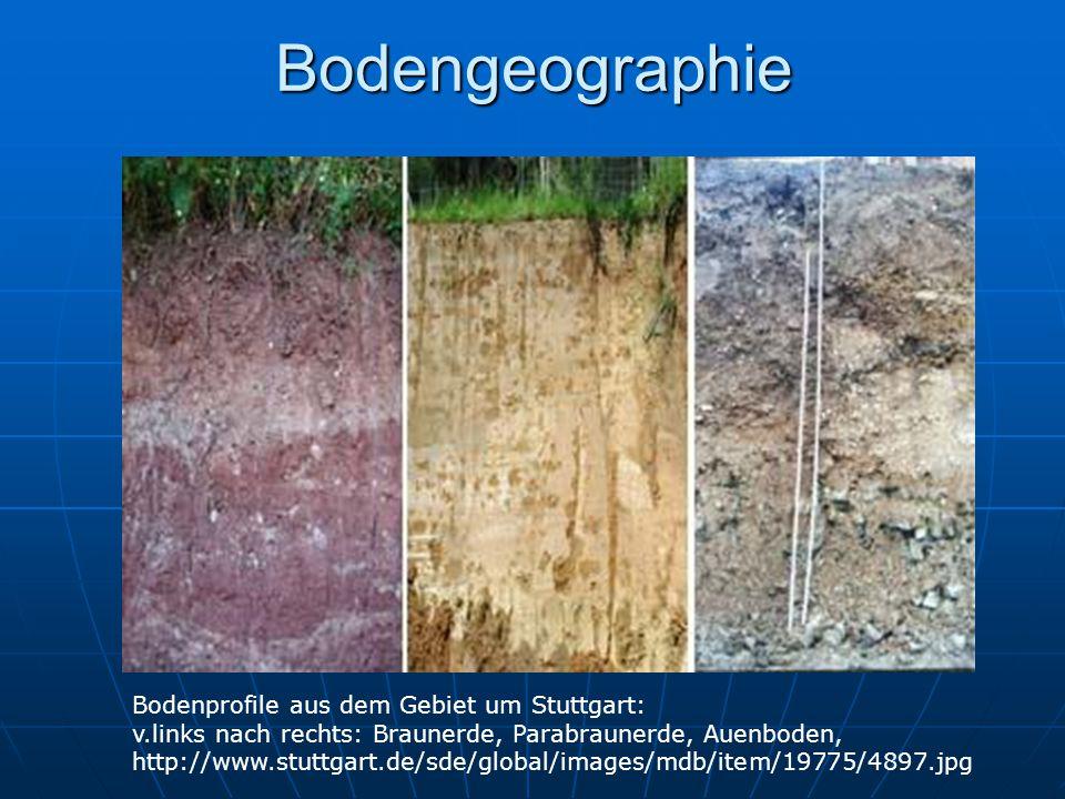Bodengeographie Bodenprofile aus dem Gebiet um Stuttgart:
