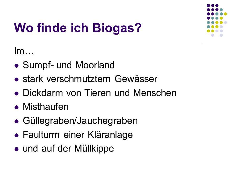 Wo finde ich Biogas Im… Sumpf- und Moorland
