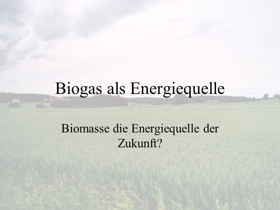 Biogas als Energiequelle