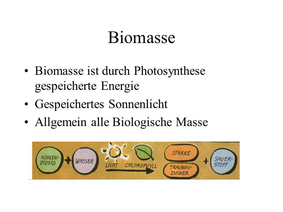 Biomasse Biomasse ist durch Photosynthese gespeicherte Energie