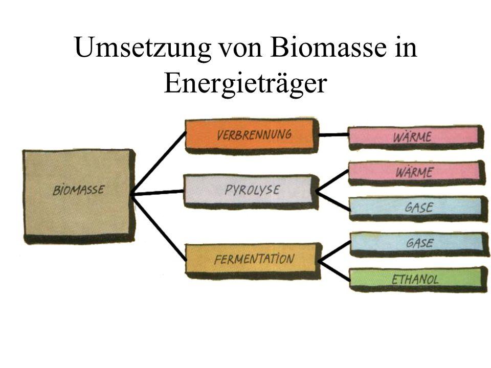 Umsetzung von Biomasse in Energieträger