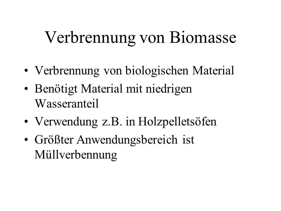 Verbrennung von Biomasse