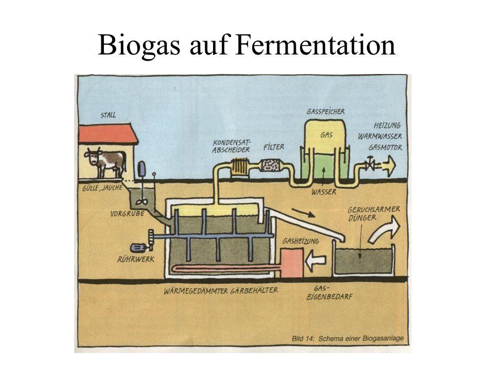 Biogas auf Fermentation