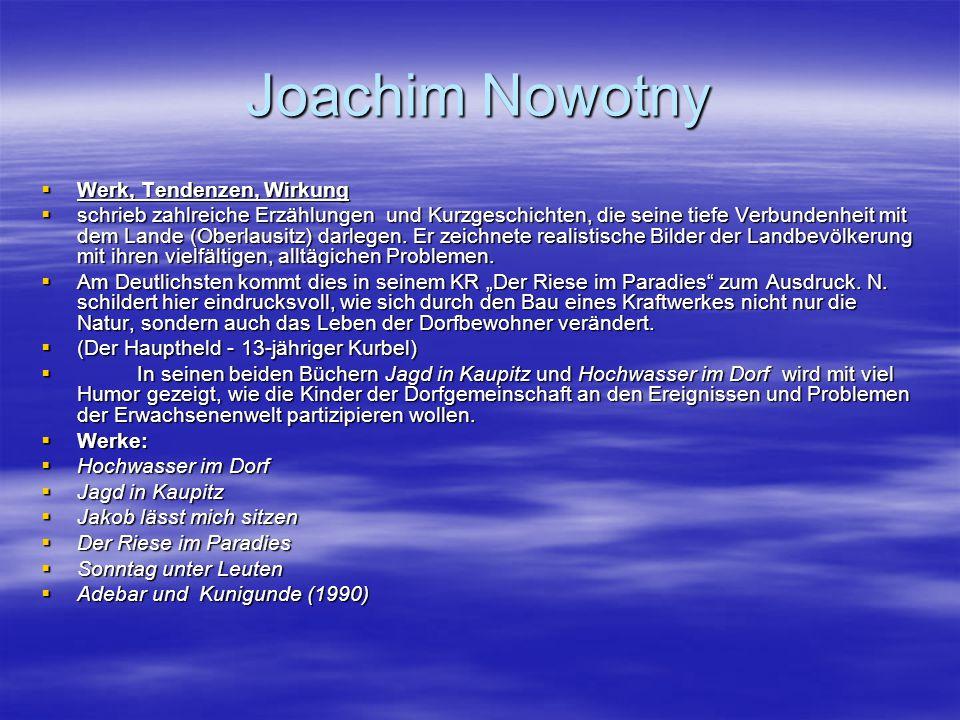 Joachim Nowotny Werk, Tendenzen, Wirkung