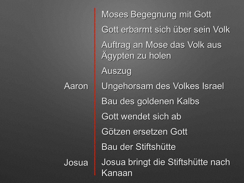 Moses Begegnung mit Gott