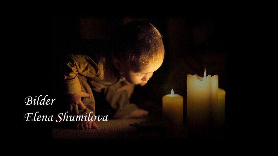 Bilder Elena Shumilova