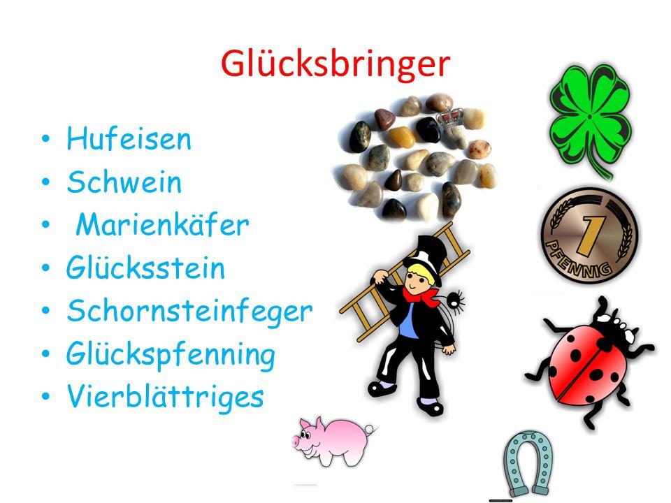 Glücksbringer Hufeisen Schwein Marienkäfer Glücksstein