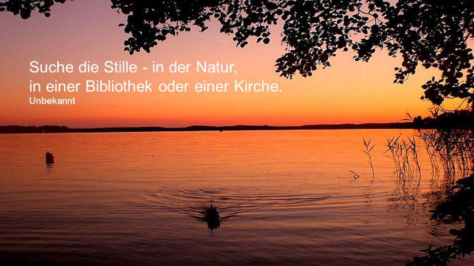 Suche die Stille - in der Natur,