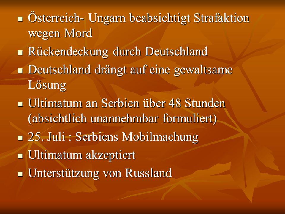 Österreich- Ungarn beabsichtigt Strafaktion wegen Mord