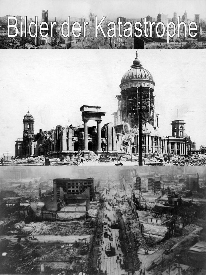 Bilder der Katastrophe