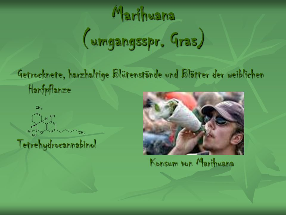 Marihuana (umgangsspr. Gras)